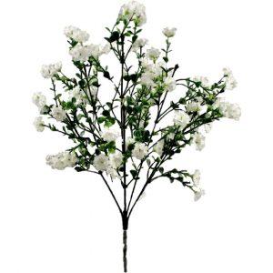 blanco flor